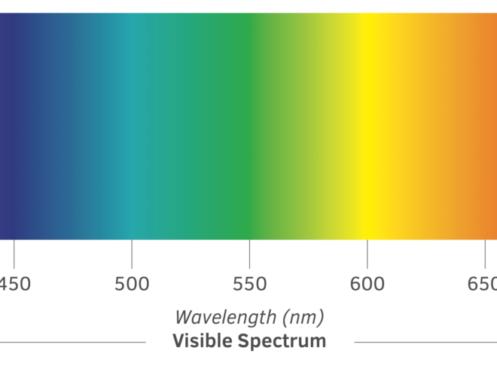 oberon-tcg-spectrum-1024x506